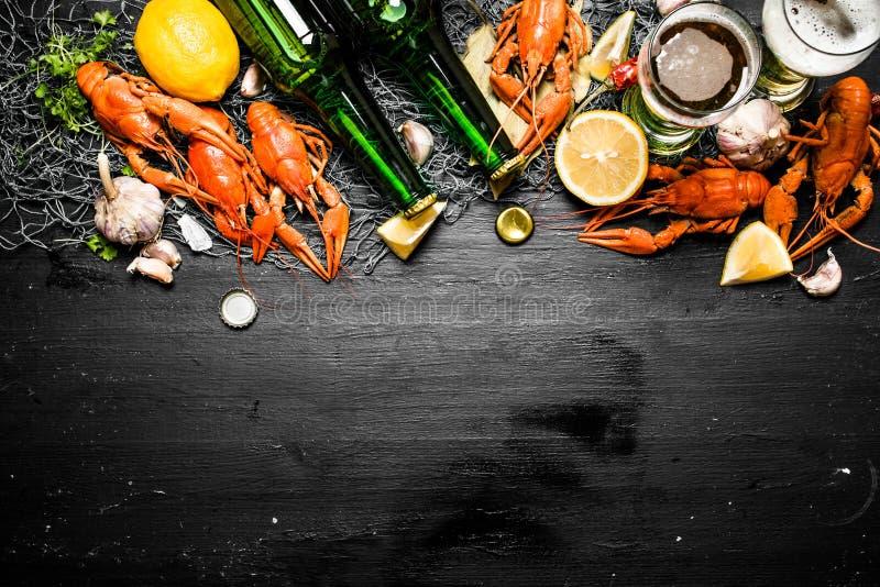 Οι λιχουδιές τροφίμων Βρασμένοι αστακοί με την μπύρα και τα καρυκεύματα στοκ εικόνες με δικαίωμα ελεύθερης χρήσης