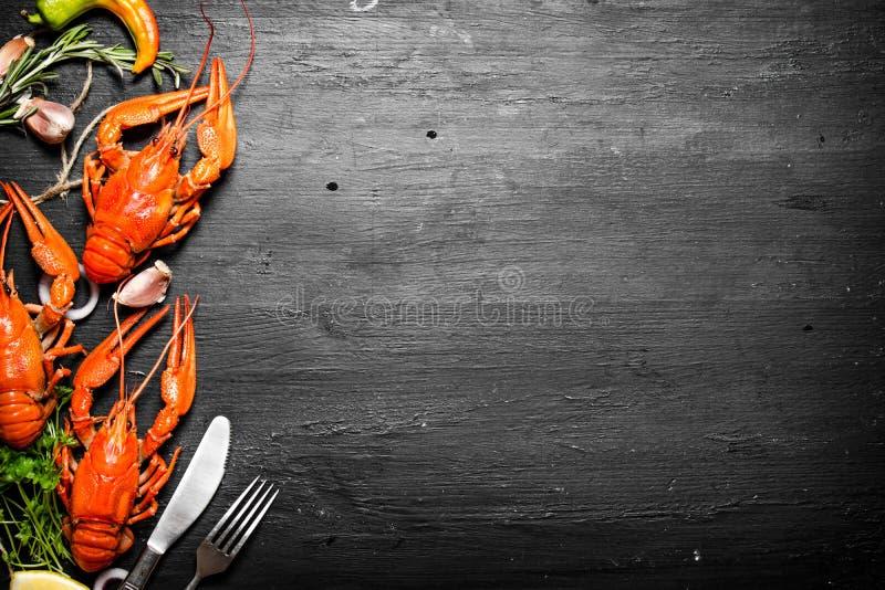 Οι λιχουδιές τροφίμων Φρέσκοι βρασμένοι αστακοί με τα καρυκεύματα και τα χορτάρια στοκ φωτογραφίες