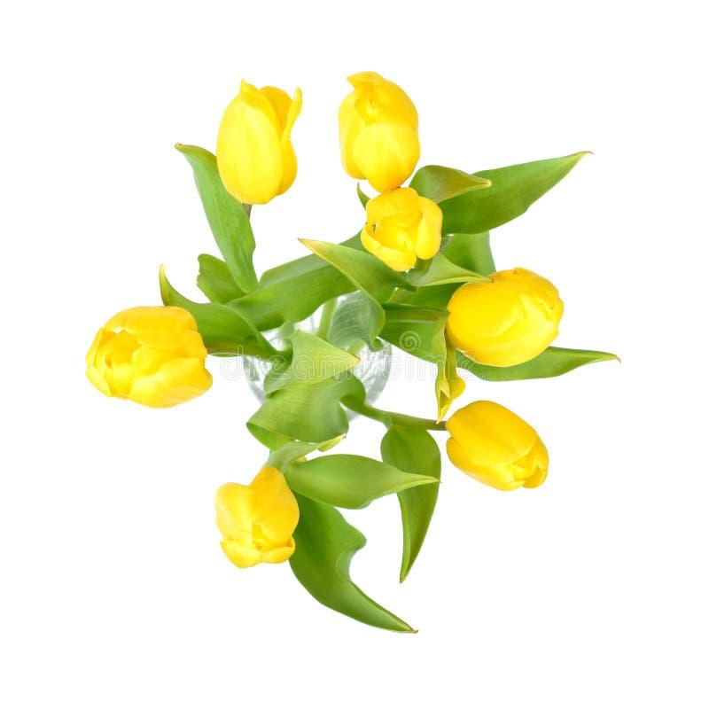 Οι κίτρινες τουλίπες σε ένα βάζο γυαλιού που απομονώνεται στο άσπρο υπόβαθρο, κίτρινο ελατήριο ανθίζουν τη τοπ άποψη στοκ εικόνα με δικαίωμα ελεύθερης χρήσης