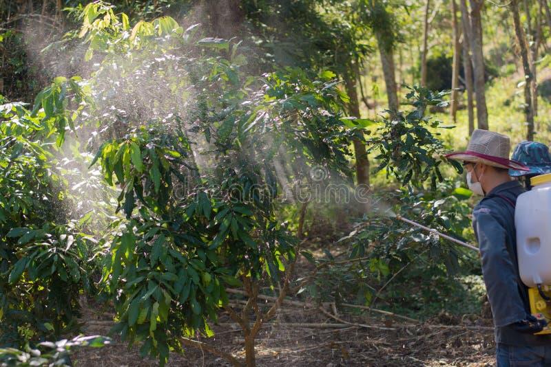 Οι κηπουροί ψεκάζουν τα εντομοκτόνα Farmer στοκ φωτογραφία με δικαίωμα ελεύθερης χρήσης