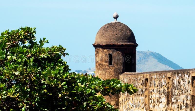 Οι κορυφές ενός οχυρού και ενός μεγάλου δέντρου στοκ φωτογραφία