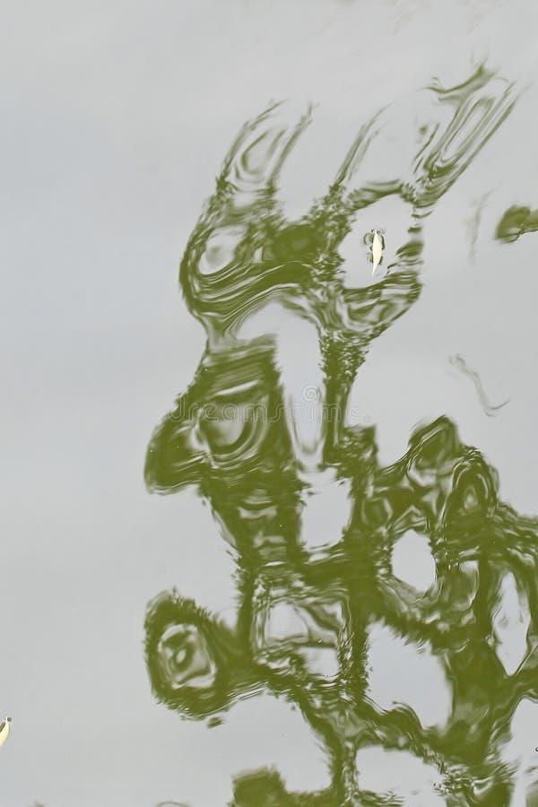 Οι κυματισμοί νερού μοιάζουν με μια αφηρημένη ζωγραφική στοκ εικόνα