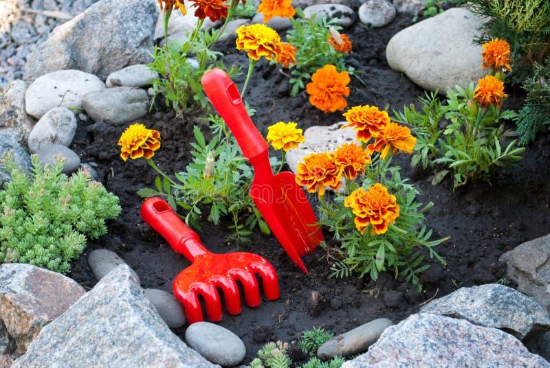 Οι κόκκινα πλαστικά τσουγκράνες και τα φτυάρια, άνοιξη λειτουργούν στο έδαφος, χαλάρωση, φύτευση των λουλουδιών στοκ φωτογραφίες με δικαίωμα ελεύθερης χρήσης