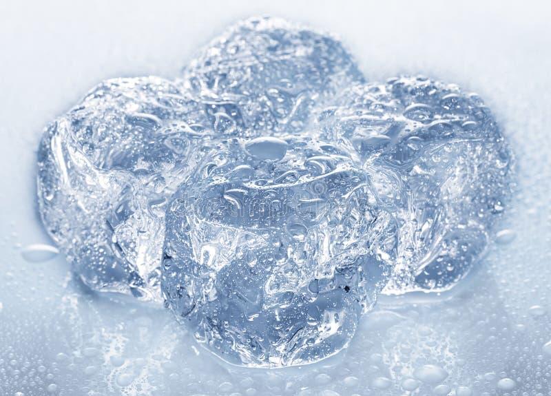 Οι κύβοι πάγου με το νερό ρίχνουν την κινηματογράφηση σε πρώτο πλάνο που απομονώνεται στοκ φωτογραφία με δικαίωμα ελεύθερης χρήσης