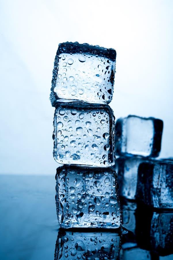 Οι κύβοι πάγου τοποθετούνται υπέροχα Τρόφιμα λουλακιού χρώματος πάγου και drin στοκ φωτογραφία με δικαίωμα ελεύθερης χρήσης