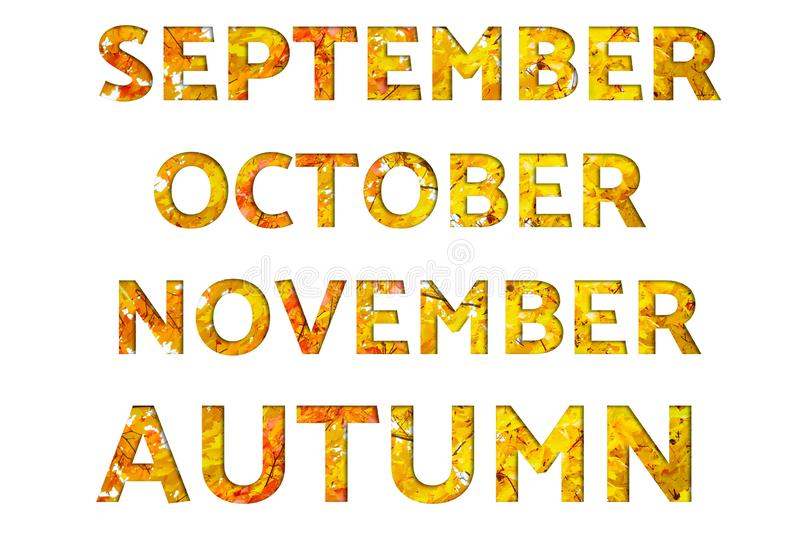 Οι λέξεις Σεπτέμβριος, Οκτώβριος, Νοέμβριος, φθινόπωρο, έκαναν από τις εικόνες φθινοπώρου με τα φύλλα σφενδάμου, που απομονώθηκαν στοκ εικόνες