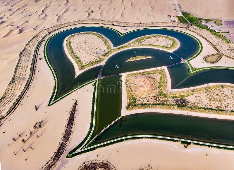 Οι λίμνες αγάπης μορφής καρδιών στο Ντουμπάι εγκαταλείπουν την εναέρια άποψη στοκ εικόνες