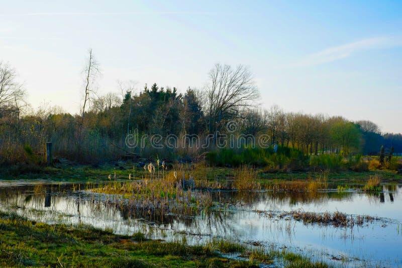 Οι λακκούβες στο καλλιεργήσιμο έδαφος στην άνοιξη στοκ εικόνες