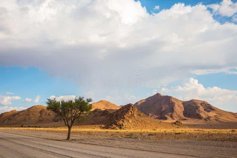 Οι λόφοι του εθνικού πάρκου namib-Naukluft στοκ εικόνα με δικαίωμα ελεύθερης χρήσης
