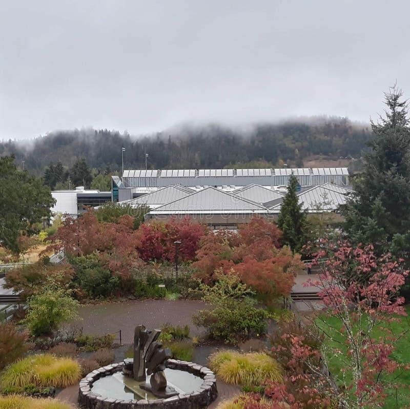 Οι λόφοι το φθινόπωρο στοκ εικόνες