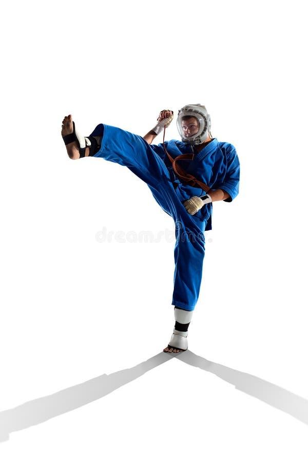 Οι μαχητές Kudo παλεύοντας απομονώνουν στοκ εικόνα με δικαίωμα ελεύθερης χρήσης