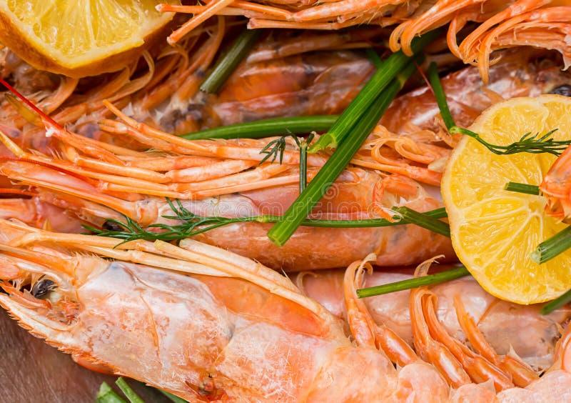 Οι μεγάλες γαρίδες με μια φέτα του λεμονιού και ένα κλαδάκι του άνηθου μαρινάρισαν τα πιάτα στοκ εικόνες με δικαίωμα ελεύθερης χρήσης