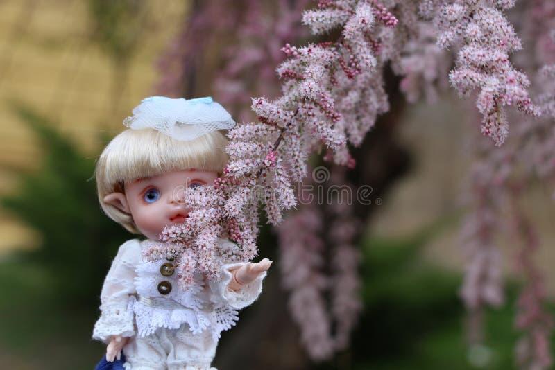 Οι μικρές κούκλες έχουν επίσης μια καρδιά στοκ φωτογραφία με δικαίωμα ελεύθερης χρήσης