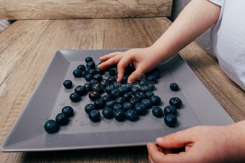Οι μικρές λαβές παίρνουν τα βακκίνια από ένα πιάτο δίπλα σε ένα γκρίζο πιάτο στο οποίο βρίσκεται βακκίνια Κατάλληλη διατροφή Φρού στοκ εικόνα με δικαίωμα ελεύθερης χρήσης