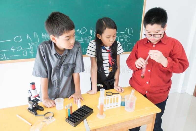 Οι μικροί σπουδαστές μελετούν την επιστήμη στην τάξη στοκ εικόνα με δικαίωμα ελεύθερης χρήσης