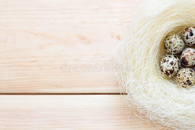 Οι μισές από τις φωλιές με τα αυγά ορτυκιών στο ξύλινο υπόβαθρο στοκ εικόνες με δικαίωμα ελεύθερης χρήσης