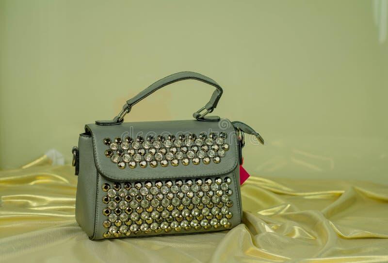 Οι μοντέρνες γυναίκες τοποθετούν το πορτοφόλι όμορφο σε σάκκο στοκ εικόνα