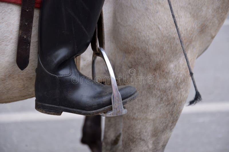Οι μπότες ιππασίας, κλείνουν επάνω στοκ εικόνες
