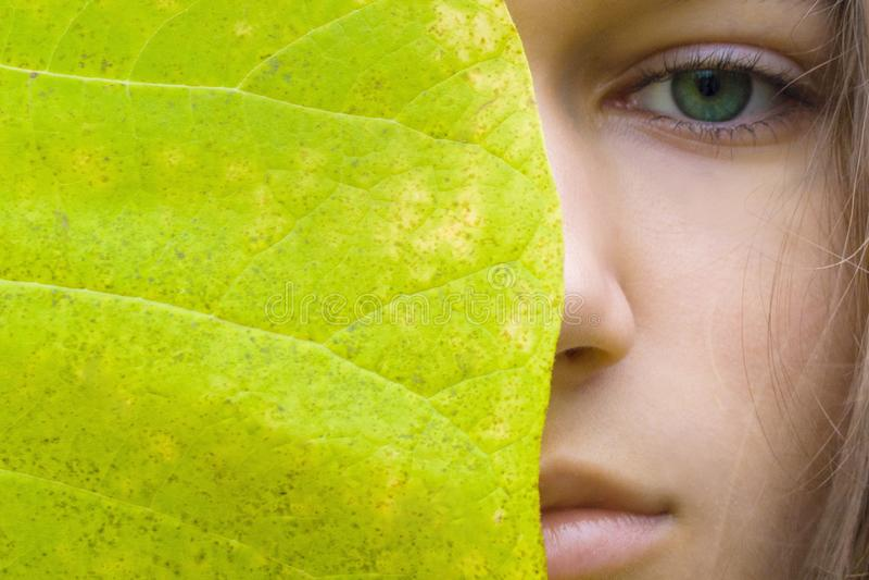 Οι νέες ξανθές γυναίκες ομορφιάς με τα πράσινα μάτια χωρίς αποτελούν Πρότυπο και μεγάλο πράσινο φύλλο κοριτσιών εφήβων στοκ φωτογραφίες