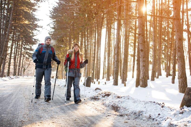 Οι νέοι ορεσίβιοι συνδέουν το περπάτημα στο βουνό στοκ φωτογραφία με δικαίωμα ελεύθερης χρήσης