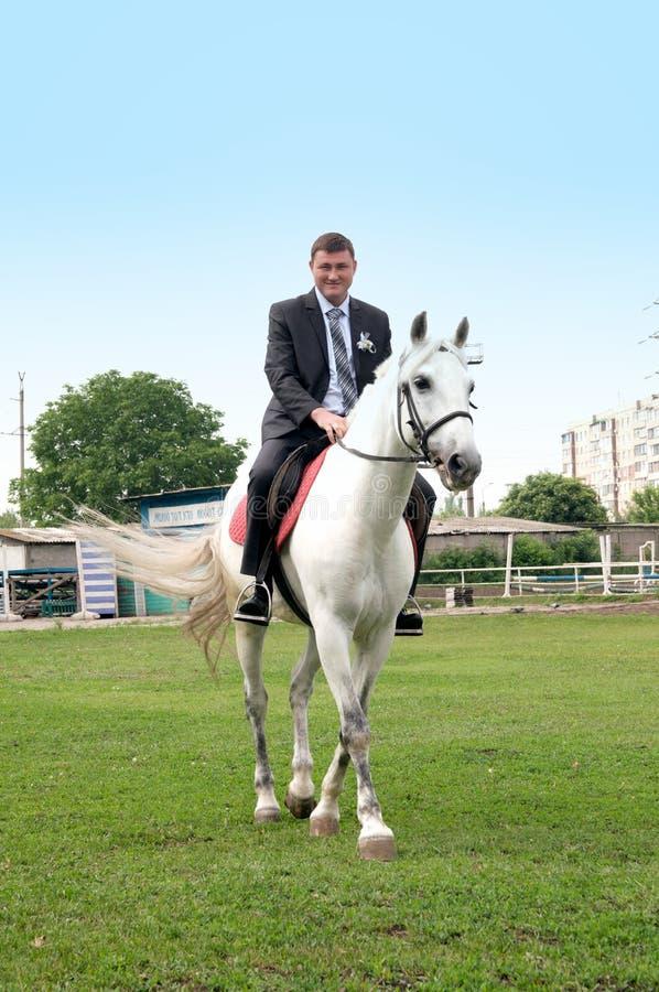 Οι νεολαίες καλλωπίζουν την οδήγηση σε ένα άσπρο άλογο στοκ εικόνες με δικαίωμα ελεύθερης χρήσης
