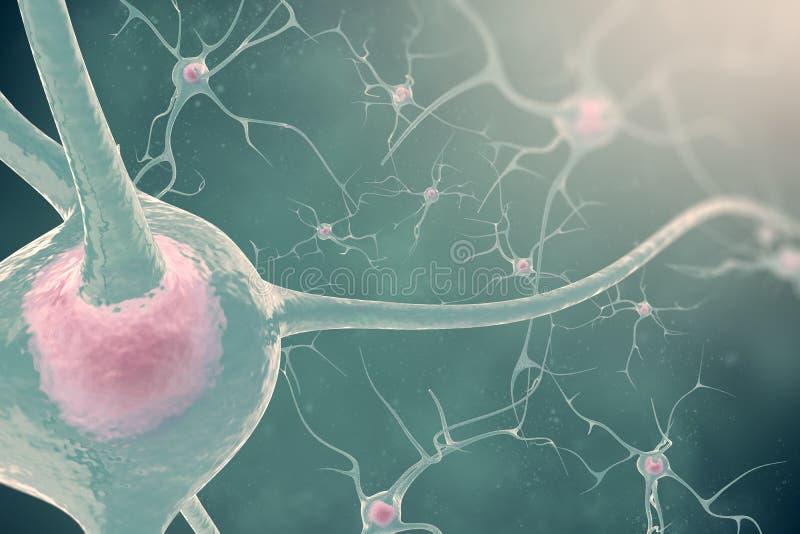 Οι νευρώνες του νευρικού συστήματος με το θόλωμα και το φως επίδρασης τρισδιάστατα κύτταρα νεύρων απεικόνισης στοκ φωτογραφία με δικαίωμα ελεύθερης χρήσης
