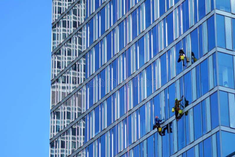 Οι ορειβάτες πλένουν τα παράθυρα και την πρόσοψη γυαλιού του ουρανοξύστη στοκ εικόνα με δικαίωμα ελεύθερης χρήσης