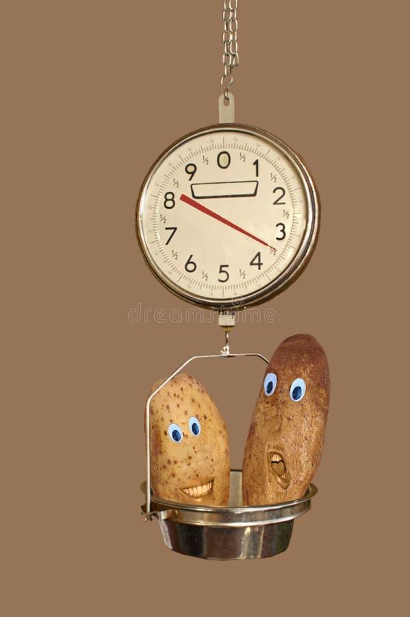 Οι πατάτες στην ένωση παράγουν τις κλίμακες στοκ φωτογραφία με δικαίωμα ελεύθερης χρήσης