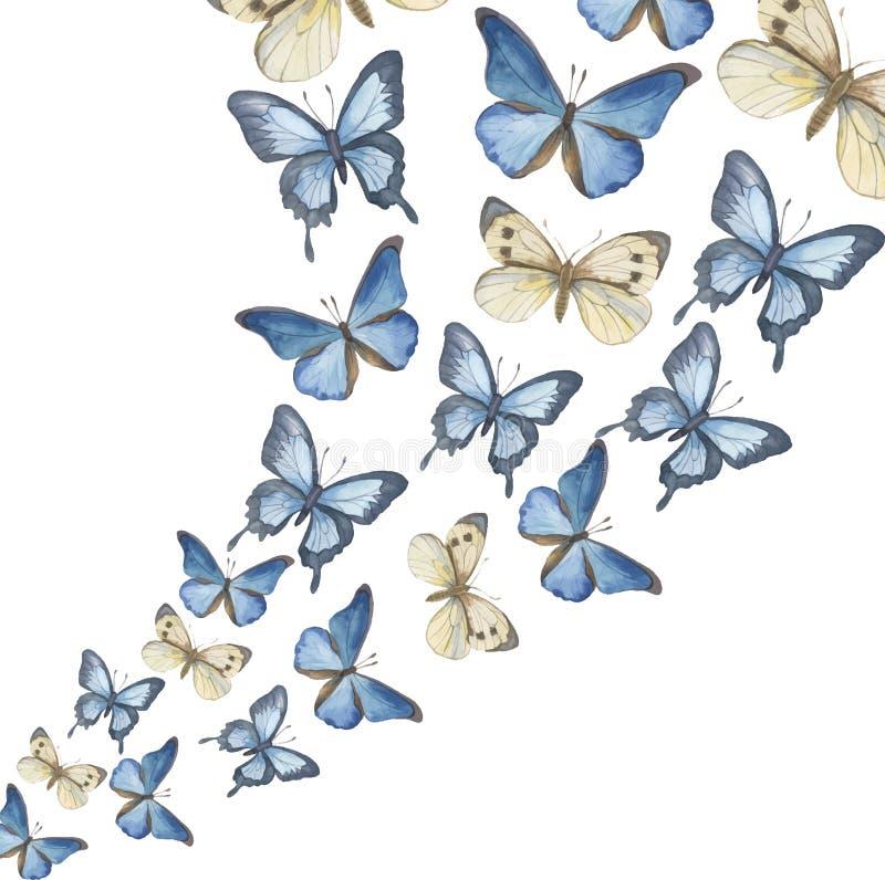 Οι πετώ-επάνω πεταλούδες watercolor διάνυσμα διανυσματική απεικόνιση