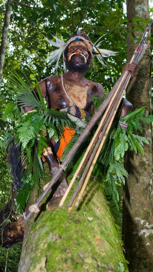 Οι πολεμιστές μιας φυλής Papuan Yafi στα παραδοσιακές ενδύματα, τις διακοσμήσεις και το χρωματισμό Νησί της Νέας Γουϊνέας, στοκ φωτογραφία με δικαίωμα ελεύθερης χρήσης