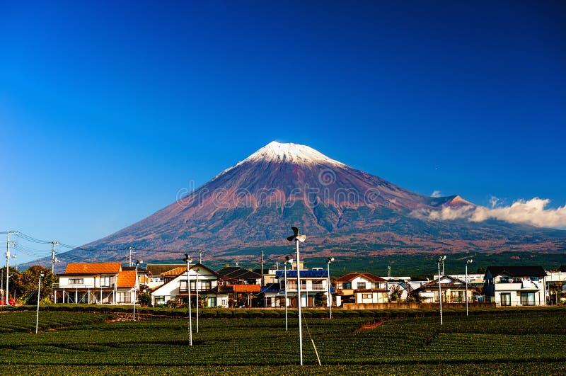 Οι πράσινοι τομείς τσαγιού και τοποθετούν το Φούτζι στοκ εικόνες με δικαίωμα ελεύθερης χρήσης