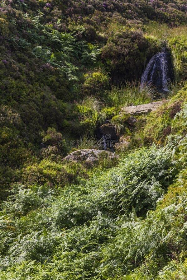 Οι πτώσεις της Bronte, Haworth δένουν Wuthering Heights, χώρα της Bronte Γιορκσάιρ Αγγλία στοκ εικόνες