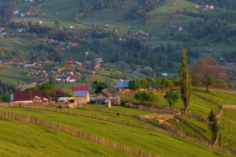 Οι σιταποθήκες και οι οικογένειες σε Bucovina, έλουσαν από το όμορφο φως ανατολής, Ρουμανία, Ευρώπη στοκ φωτογραφίες με δικαίωμα ελεύθερης χρήσης