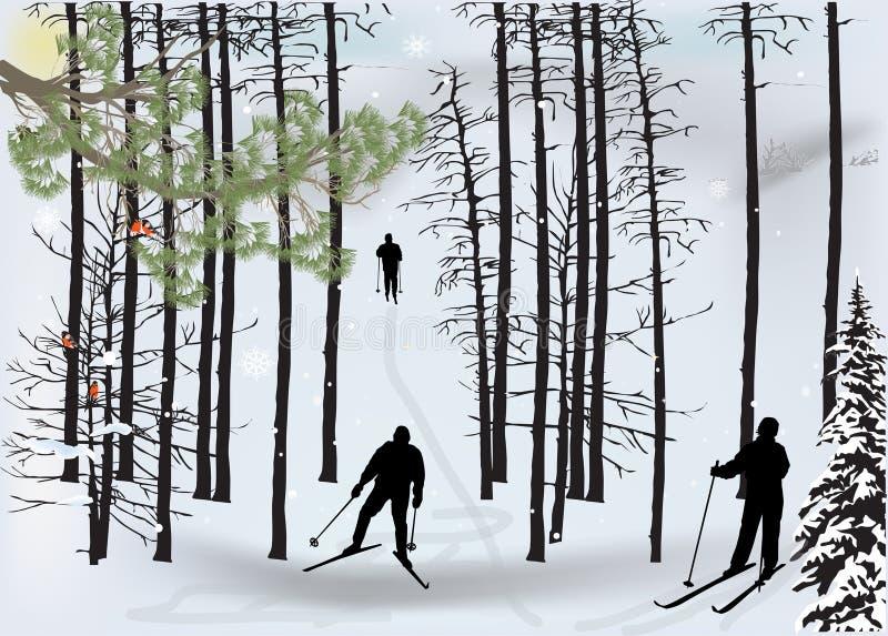 Οι σκιέρ σκιαγραφούν στο χειμερινό δάσος χιονιού απεικόνιση αποθεμάτων
