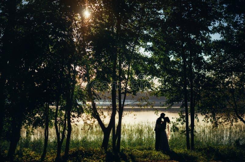 Οι σκιαγραφίες της νύφης και του νεόνυμφου φιλούν στην ακτή της λίμνης μεταξύ των δέντρων στο ηλιοβασίλεμα στοκ φωτογραφία
