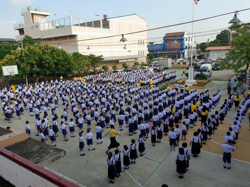Οι σπουδαστές έχουν την αύξηση σημαιών στοκ εικόνες με δικαίωμα ελεύθερης χρήσης