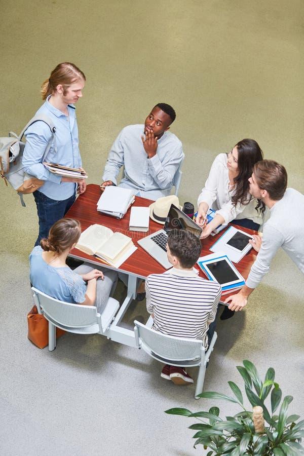 Οι σπουδαστές μελετούν μαζί ομαδικά στοκ εικόνες
