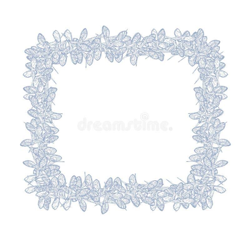 Οι σπόροι τριφυλλιού τακτοποιούν το ανοικτό μπλε πλαίσιο διανυσματική απεικόνιση
