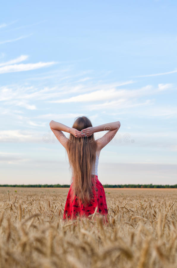 Οι στάσεις κοριτσιών πίσω σε έναν τομέα του σίτου, δίνουν πίσω από το κεφάλι του και θαυμασμός του ουρανού στοκ εικόνες