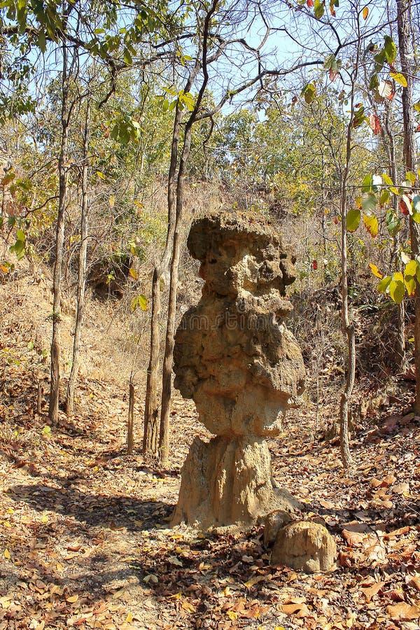 Οι στήλες που βρίσκονται εδαφολογικές στη φύση στοκ εικόνες με δικαίωμα ελεύθερης χρήσης
