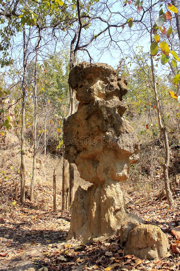 Οι στήλες που βρίσκονται εδαφολογικές στη φύση στοκ φωτογραφία