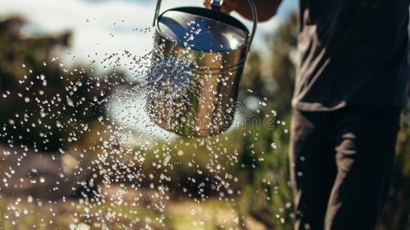 Οι συγκομιδές νερού της Farmer με μπορούν στοκ φωτογραφία με δικαίωμα ελεύθερης χρήσης