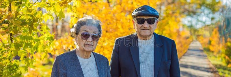 Οι συνταξιούχοι στα γυαλιά ηλίου στους δασικούς συνταξιούχους φθινοπώρου συμπαθούν το ΕΜΒΛΗΜΑ γκάγκστερ, ΜΑΚΡΟΧΡΟΝΙΟ ΣΧΗΜΑ στοκ φωτογραφία
