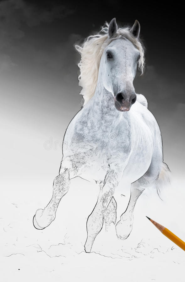 οι τέχνες παίρνουν το λευκό τρεξιμάτων διαβίωσης αλόγων scetch διανυσματική απεικόνιση