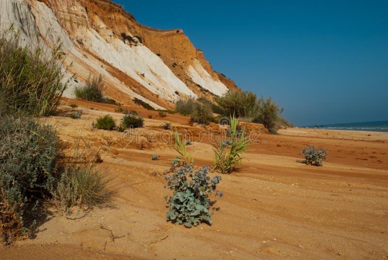 Οι τεράστιοι αμμόλοφοι στην άγρια ατλαντική ακτή στοκ φωτογραφία με δικαίωμα ελεύθερης χρήσης