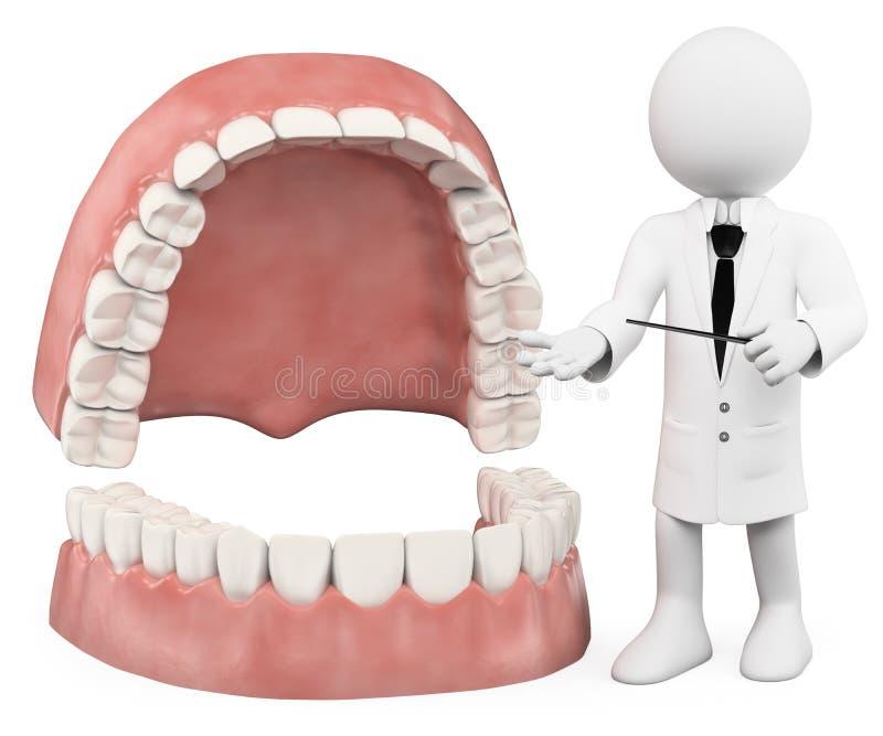 οι τρισδιάστατοι άνθρωποι εξετάζουν το λευκό Καθηγητής που παρουσιάζει μια οδοντοστοιχία ελεύθερη απεικόνιση δικαιώματος