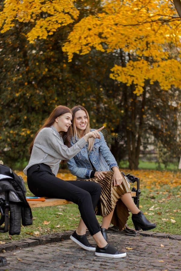 Οι φίλες παρατήρησαν κάτι μακριά σε έναν πάγκο στο πάρκο φθινοπώρου στοκ εικόνες