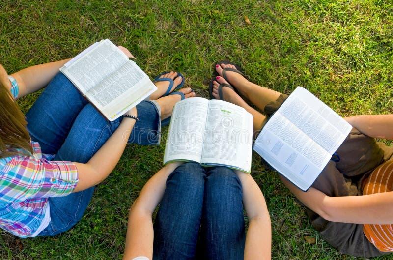 οι φίλοι Βίβλων μελετούν στοκ εικόνα με δικαίωμα ελεύθερης χρήσης