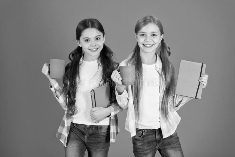 Οι φίλοι ξοδεύουν τα βιβλία ανάγνωσης ελεύθερου χρόνου r Κατανάλωση του τσαγιού διαβάζοντας το βιβλίο Αδελφές που χαλαρώνουν με τ στοκ εικόνες