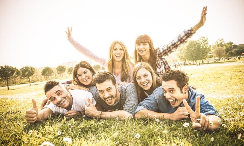Οι φίλοι ομαδοποιούν την κατοχή της διασκέδασης μαζί με την αυτοπροσωπογραφία στο λιβάδι στοκ εικόνα με δικαίωμα ελεύθερης χρήσης